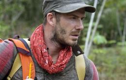 David Beckham thừa nhận nhớ vợ con khi quay show thực tế ở rừng Amazon