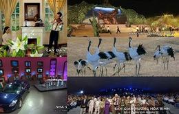 Ấn tượng VTV: Danh sách đề cử chương trình Văn hóa - Khoa học - Xã hội - Giáo dục