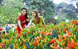 Hội hoa Xuân 'Dáng đứng Việt Nam' tại công viên Tao Đàn