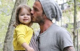 Becks định cấm con gái hẹn hò