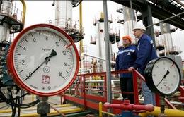 Người dân Ukraine đối mặt với giá khí đốt sinh hoạt tăng cao