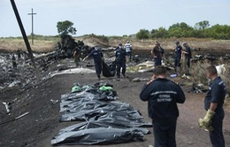 Báo cáo đầu tiên về vụ rơi máy bay MH17 được công bố vào 9/9