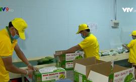 Sản xuất, chế biến hiệu quả và bền vững: Hướng đi cho rau quả Việt