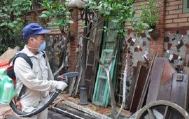 Tổ chức chiến dịch diệt bọ gậy chống sốt xuất huyết trên toàn quốc