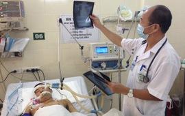 Bệnh Whitmore liệu có nguy cơ bùng phát thành dịch?