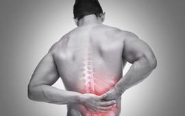 Các bài tập cho bệnh nhân đau lưng