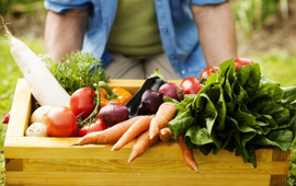 Chế độ ăn cho bệnh nhân rối loạn lipid máu trong những ngày Tết