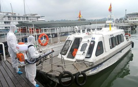 Quảng Ninh tạm dừng toàn bộ hoạt động vận tải khách