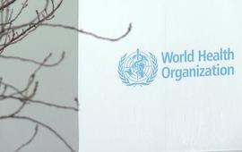 Ủy ban độc lập chỉ trích WHO và Trung Quốc phản ứng chậm trong giai đoạn đầu của đại dịch