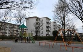 Dân số trẻ em ở Nhật Bản thấp kỷ lục sau 40 năm giảm liên tiếp