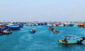 Ngư dân Quảng Trị phấn khởi với chuyến biển đầu năm