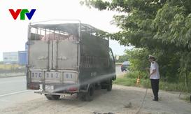 Hà Tĩnh: Tập trung ngăn chặn dịch tả lợn châu Phi