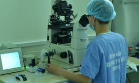 Thụ tinh trong ống nghiệm thành công cho bệnh nhân xuất tinh ngược dòng