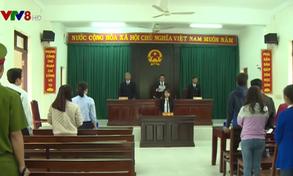 Phú Yên: Xét xử vụ 12 giáo viên huyện Tây Hòa bị buộc chấm dứt hợp đồng