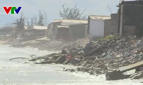 Sạt lở bờ biển do triều cường xâm thực tại Ninh Thuận