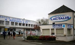 Pháp yêu cầu Lactalis thu hồi toàn bộ sữa nhiễm khuẩn