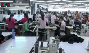 Quảng Nam khó xử lý nhiều doanh nghiệp nợ đọng bảo hiểm