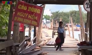 Khánh Hòa khẩn trương sửa chữa cầu gỗ Phú Kiểng
