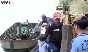 Những chuyến ca nô đưa học sinh qua sông mùa lũ