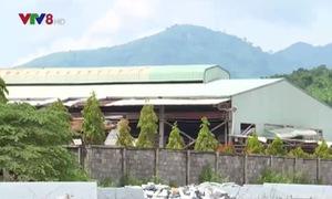 [ĐƯỜNG DÂY NÓNG VTV8]: Doanh nghiệp xả thải gây ô nhiễm ở Khánh Hòa