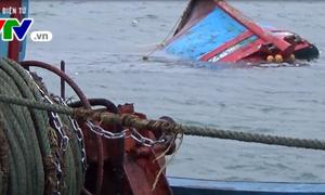 Đà Nẵng: Cứu kịp thời 13 ngư dân bị chìm tàu trên biển