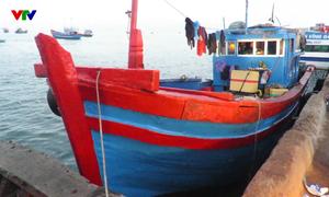 Thêm một tàu cá dùng súng điện khai thác hải sản bị tạm giữ