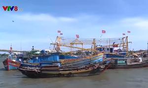 Khai thác tiềm năng tổ, đội tàu thuyền trên biển