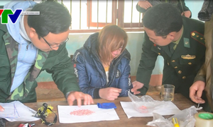 Các tỉnh liên tiếp bắt các vụ vận chuyển ma túy, pháo lậu cận Tết