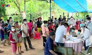Việt Nam đang đối mặt với tình trạng kháng thuốc sốt rét cao trong khu vực