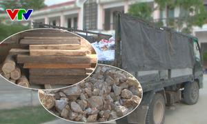 Phú Yên phát hiện nhiều vụ vận chuyển lâm, khoáng sản trái phép