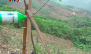 Quảng Ngãi: Lo lắng ô nhiễm nguồn nước từ thuốc diệt cỏ