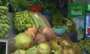 Khai mạc phiên chợ xứ Tiên, Quảng Nam