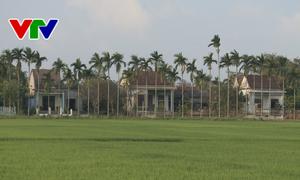 Quảng Nam có gần 230 khu dân cư nông thôn mới kiểu mẫu