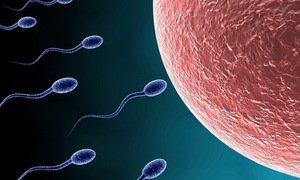 Gel tránh thai cho nam giới, chỉ cần thoa lên vai
