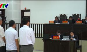 Đà Nẵng: Xét xử vụ án buôn lậu gỗ trắc sau 3 lần trả hồ sơ điều tra bổ sung