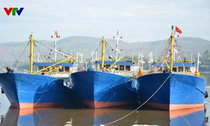 Quảng Ngãi đưa vào sử dụng 64 tàu cá theo Nghị định 67