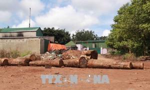 Người dân dùng gỗ, gạch đá chặn trước cổng công ty vì gây ô nhiễm môi trường