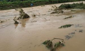 Nghệ An huy động  mọi nguồn lực khắc phục bão lụt