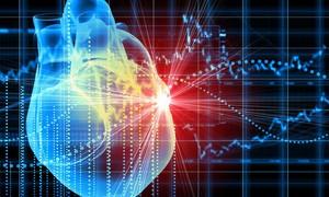 Trái tim kỹ thuật số giúp chẩn đoán bệnh