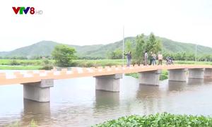 Những chiếc cầu trước mùa mưa cho học sinh vùng lũ