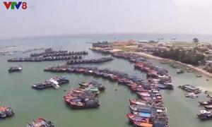 Tiếp tục tuyên truyền ngăn chặn khai thác hải sản bất hợp pháp