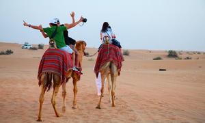 Saudi Arabia nỗ lực thúc đẩy lượng du khách nội địa