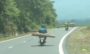 Ngăn chặn đường dây gỗ lậu cuối năm
