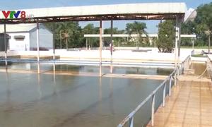 Yêu cầu đảm bảo cung cấp nước an toàn cho Đà Nẵng