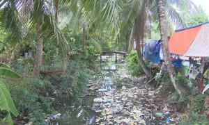 Chợ tự phát bức tử kênh thủy lợi tại Tiền Giang