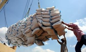 Đáp ứng tiêu chuẩn chất lượng, kiểm dịch để đẩy mạnh xuất khẩu gạo sang Trung Quốc