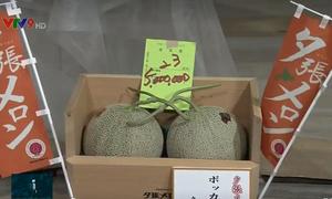 Cặp dưa giá kỷ lục 5 triệu Yen