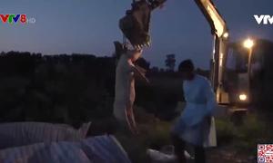 Hà Tĩnh: Ngăn chặn dịch Tả lợn châu phi bùng phát trở lại