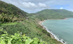 Đà Nẵng rà soát công trình xây dựng tại bán đảo Sơn Trà