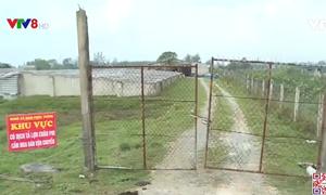 Hà Tĩnh ngăn chặn dịch tả lợn Châu phi bùng phát